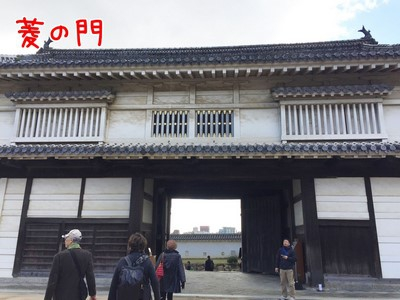 イルミネーションツアー12/6 姫路城・なばなの里
