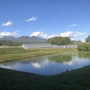 長野での田舎生活・・・ちょっと春めいてきました